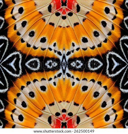 Beautiful seamless orange and yellow background made of Leopard Lacewing butterfly's wing textures - stock photo