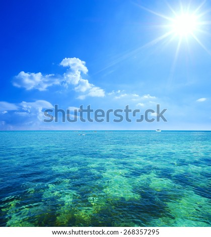 beautiful seascape and blue sky, showing tropical coral reef as seen from from the sky