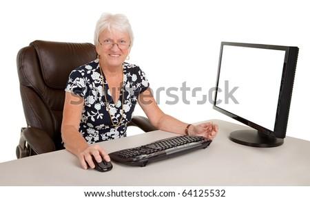 Beautiful Senior Businesswoman - stock photo