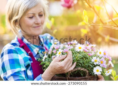 Beautiful senior woman planting flowers in her garden - stock photo