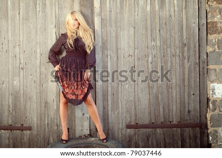 Beautiful sexy woman with long blonde hair in black dress posing against the fence - stock photo
