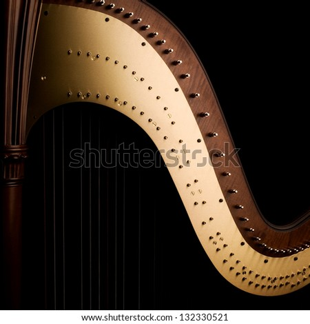 Beautiful shape of harp, close up on the dark, black background - stock photo