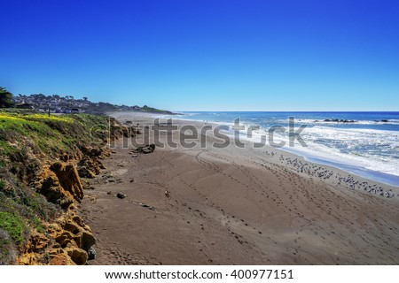 Beautiful shimmering blue sea & blue sky, with white water waves crashing on Moonstone Beach, while seagulls are bathing in the summer sun. In the background are seaside cottages, near Cambria CA. - stock photo