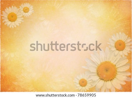 Beautiful shiny floral greeting card - stock photo