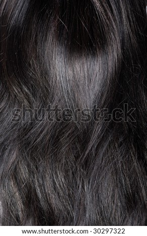 Black Mane Stock Images, Royalty-Free Images & Vectors ...