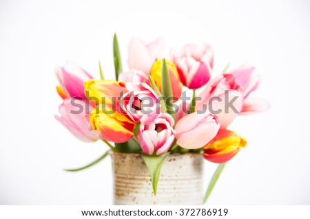 Beautiful Simple Bouquet of Fresh Spring Tulips - stock photo