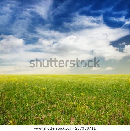 beautiful sky and green fields - stock photo