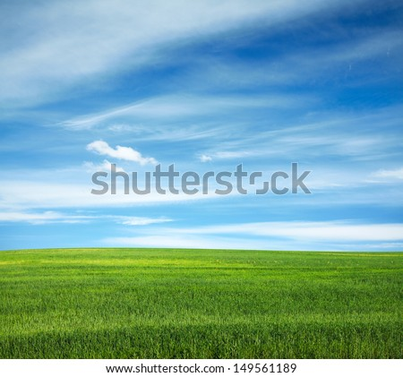beautiful sky and summer fields  - stock photo