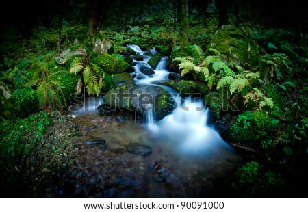 beautiful small cascade with long exposure in black forest, germany - stock photo