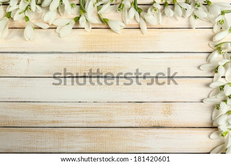 Beautiful snowdrops on wooden background - stock photo