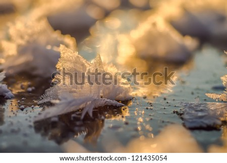 Beautiful snowflake on ice close up. Sunset light with reflection. Small depth of sharpness