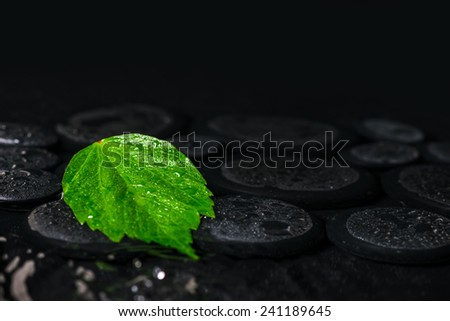 beautiful spa background of green leaf hibiscus on zen basalt stones with drops in ripple reflection water - stock photo