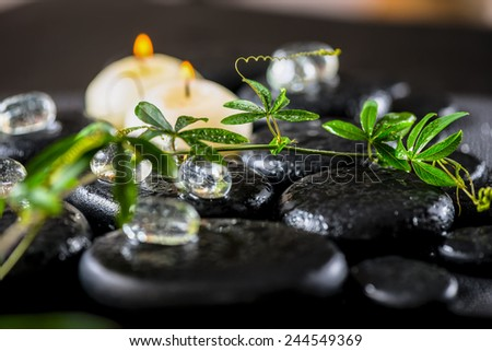beautiful spa background of green twig passionflower with tendril, ice and candles on zen basalt stones with drops - stock photo
