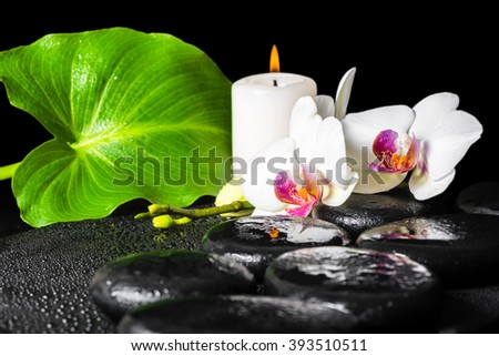beautiful spa background of white orchid flower, phalaenopsis, green leaf with dew, black zen stones and candle - stock photo