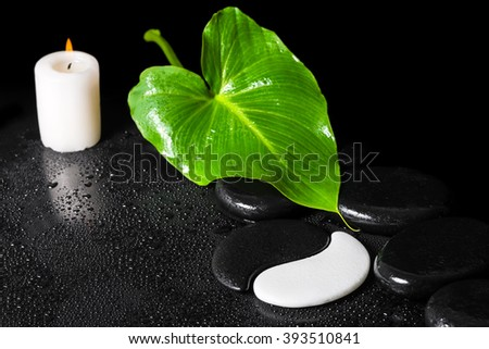 beautiful spa background of Yin-Yang stone texture symbol, green leaf with dew, candle and black zen stones - stock photo