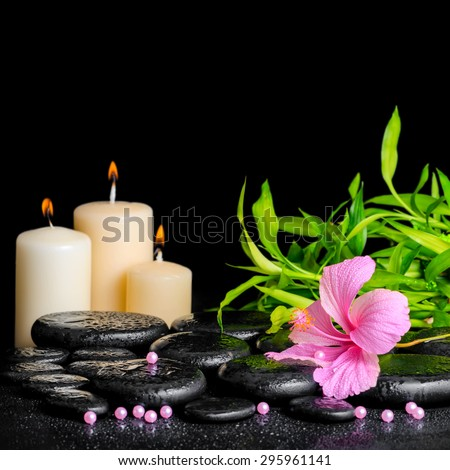 beautiful spa composition of pink hibiscus flower, twig bamboo, beads and candles on zen basalt stones with drops, closeup - stock photo