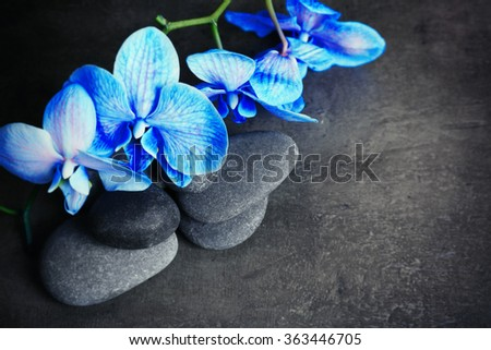 Beautiful spa composition with blue orchid and stones - stock photo