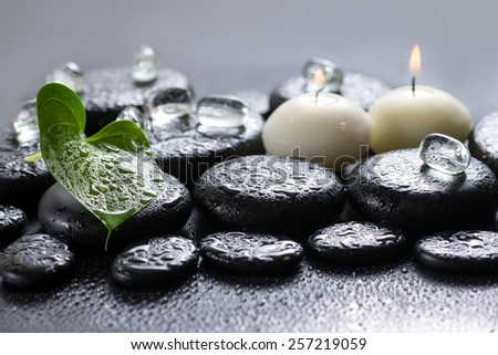beautiful spa concept of green leaf Calla lily, ice and candles on zen basalt stones with drops, closeup - stock photo
