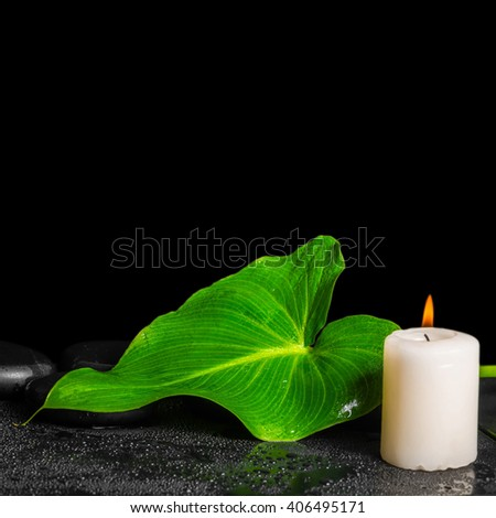 beautiful spa concept of green leaf Calla lily with dew, zen stones and salt on black background, close up - stock photo