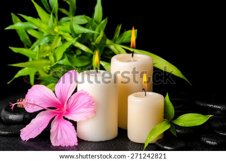 beautiful spa concept of pink hibiscus flower, twig bamboo and three white candles on zen basalt stones with drops - stock photo
