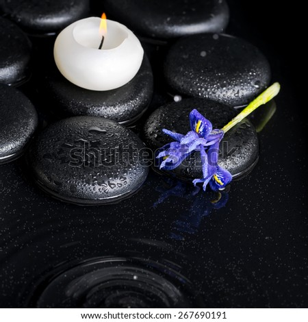 beautiful spa concept top down of iris flower, candles and black zen stones on ripple reflection water, closeup - stock photo