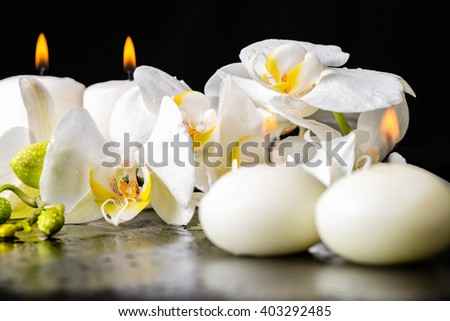 beautiful spa decoration of blooming white orchid flower, phalaenopsis with dew and candles on black background - stock photo