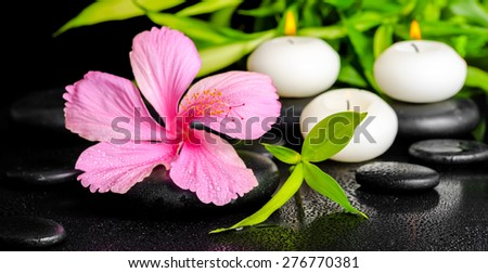 beautiful spa setting of pink hibiscus flower, twigs bamboo and candle on zen basalt stones with dew, panorama  - stock photo