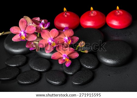 beautiful spa still life of blooming twig red orchid flower, phalaenopsis with water drops and candles on zen basalt stones - stock photo