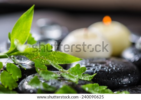beautiful spa still life of green twig fern, bamboo,  ice and candles on zen basalt stones with dew - stock photo
