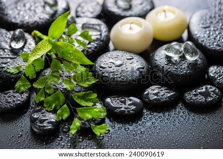 beautiful spa still life of green twig fern, bamboo, ice and candles on zen basalt stones with drops - stock photo