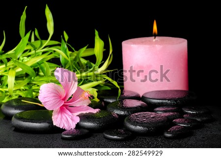 beautiful spa still life of pink hibiscus flower, twig bamboo and pink candle on zen basalt stones with drops, closeup - stock photo