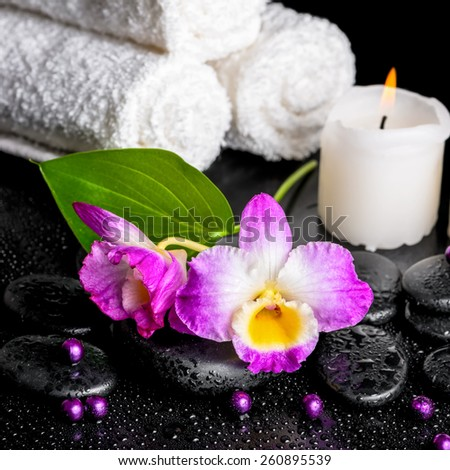 beautiful spa still life of purple orchid dendrobium, leaf with dew, towels, candle and pearl beads on black zen stones, closeup - stock photo