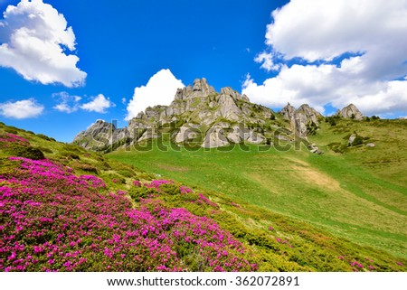 Beautiful spring background, on mountain - stock photo