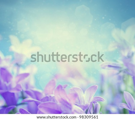 Beautiful spring background with campanula bouquet. - stock photo