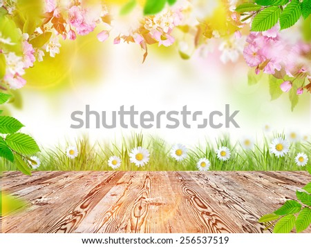 spring leaf table spring background stock photo 68078656 shutterstock