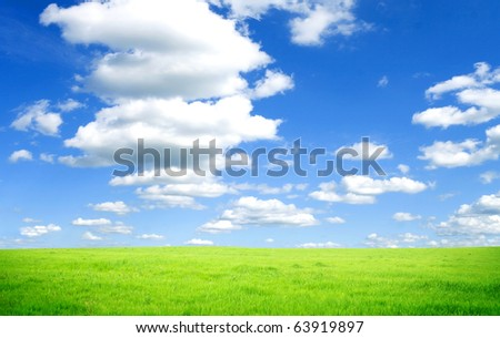 Beautiful spring field with a green grass and the beautiful sky on horizon with gray clouds - stock photo