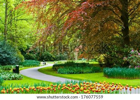 Beautiful spring flowers in Keukenhof garden, Holland - stock photo