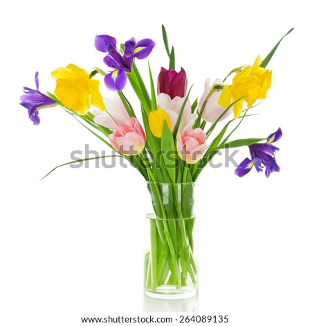 Beautiful spring flowers isolated on white - stock photo