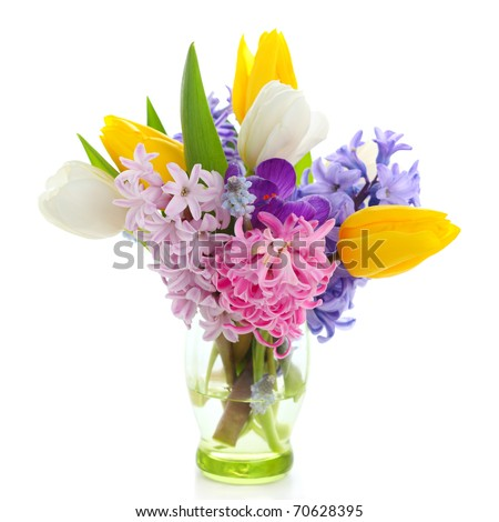 Beautiful spring flowers  isolated on white background(crocus, hyacinth, tulip) - stock photo