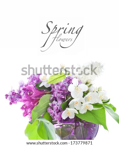 Beautiful spring flowers on a white background