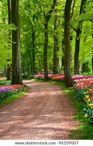 Beautiful spring garden. - stock photo