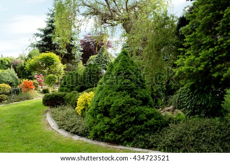 Surprising Conifer Stock Images Royaltyfree Images  Vectors  Shutterstock With Fetching Beautiful Spring Garden Design With Conifer Trees Green Grass And Eneving  Sun Luxury With Agreeable Garden Umbrella Also Garden Centres Near Belfast In Addition Garden Magic Ltd And Be One Covent Garden As Well As Tesco Garden Furniture Sets Additionally Kew Gardens Train Station Address From Shutterstockcom With   Fetching Conifer Stock Images Royaltyfree Images  Vectors  Shutterstock With Agreeable Beautiful Spring Garden Design With Conifer Trees Green Grass And Eneving  Sun Luxury And Surprising Garden Umbrella Also Garden Centres Near Belfast In Addition Garden Magic Ltd From Shutterstockcom