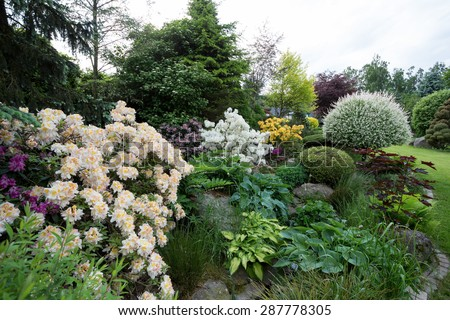 Beautiful spring garden design with flowering rhododendron and conifers - stock photo