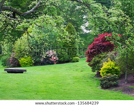 Beautiful spring garden with azalea flowers