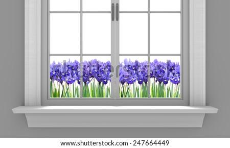 Beautiful spring irises flowering outside a house window - stock photo