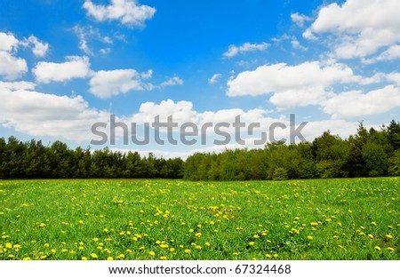 Beautiful spring landscape - stock photo