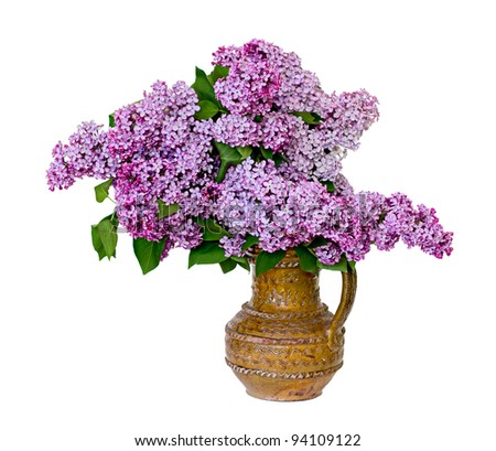 Beautiful spring lilac bouquet in clay vase. Isolated over white background.