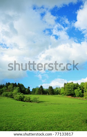 Beautiful Spring rural landscape, vertical