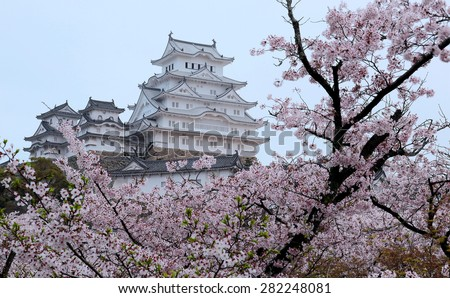 Beautiful spring scenery of a majestic Japanese castle ~ Amazing cherry blossoms surrounding the main tower ( tenshukaku ) of Himeji Castle, also called the White Heron Castle, in Hyogo Japan - stock photo