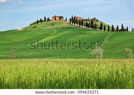 Beautiful spring scenery of farm houses standing alone on top of a rolling hill with green grass fields and cypress trees under clear sunny sky in Val d'Orcia, Tuscany Italy - stock photo